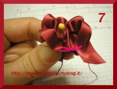 fiorellino7.jpg