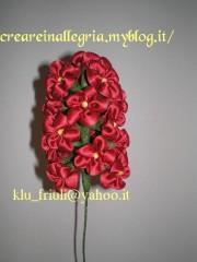 giacinto rosso.jpg